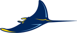 Rays2.png